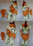 absurdres autumn_blaze baraka1980 highres kirin photo plushie toy