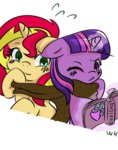 book scarf shipping sunlight sunset_shimmer twilight_sparkle walthooves