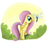 dragonfly filly fluttershy pridark transparent