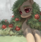 aphphphphp flowers highres original_character rose_(flower)