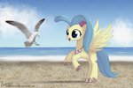 beach bird princess_skystar seagull songbirdserenade