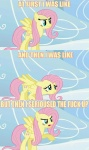 artist_unknown fluttershy macro meme screencap