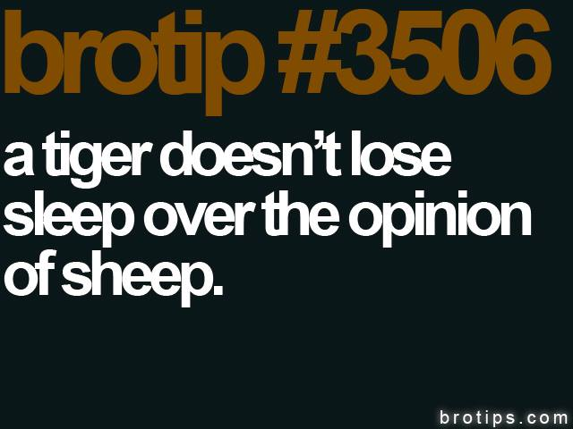 brotip #3506 A tiger doesn't lose sleep over the opinion of sheep.