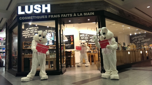 Bunnies Spread Awareness to End Cosmetics Animal Testing!