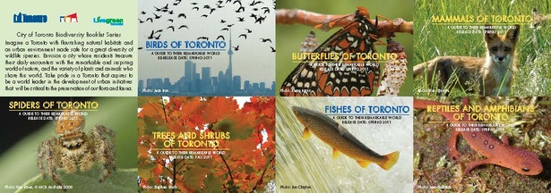City launches Biodiversity book Series with 'talk and tour' event