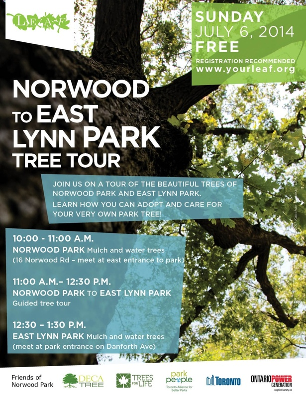 Norwood to East Lynn Park Tree Tour