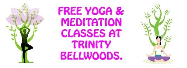 Free Yoga @ Trinity Bellwoods Park