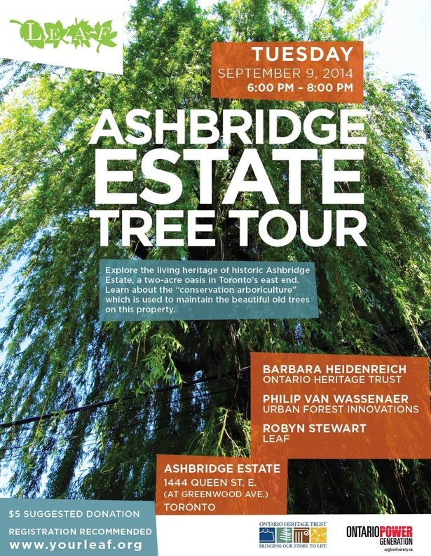 Ashbridge Estate Tree Tour