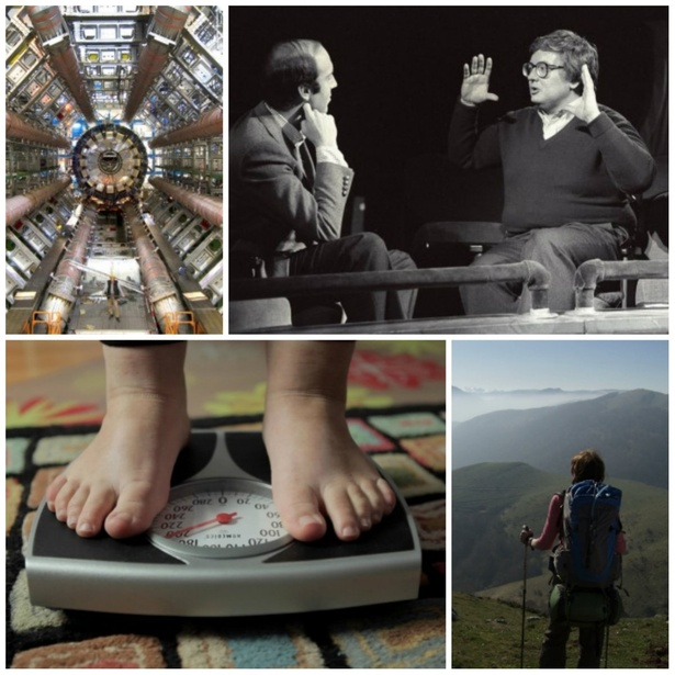 DOC DAYS OF SUMMER AT THE BLOOR HOT DOCS CINEMA
