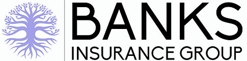 Banks Insurance Group Logo