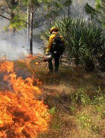 Fire Restoration in Florida