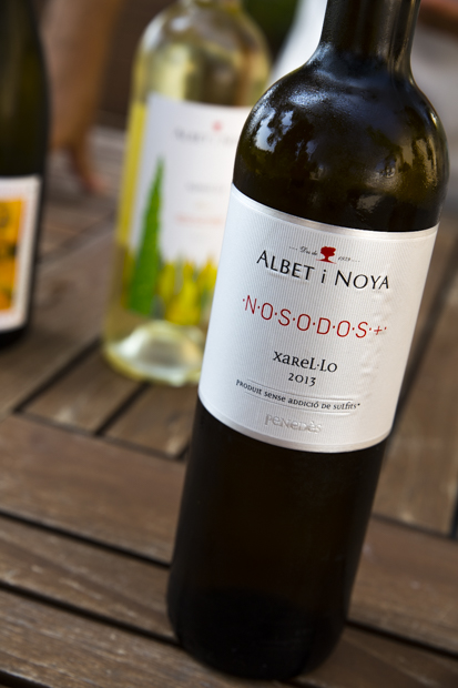 Albet i Noya: the passion that carries on