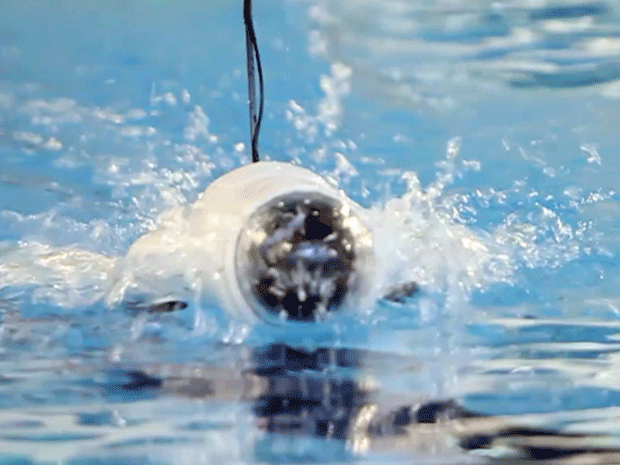 Insert Coin semifinalist Ziphius is a smartphonecontrolled aquatic drone