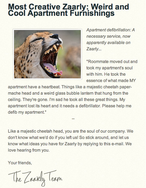 Zaarly Newsletter