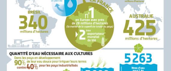 eau, agriculture, défi, infographie