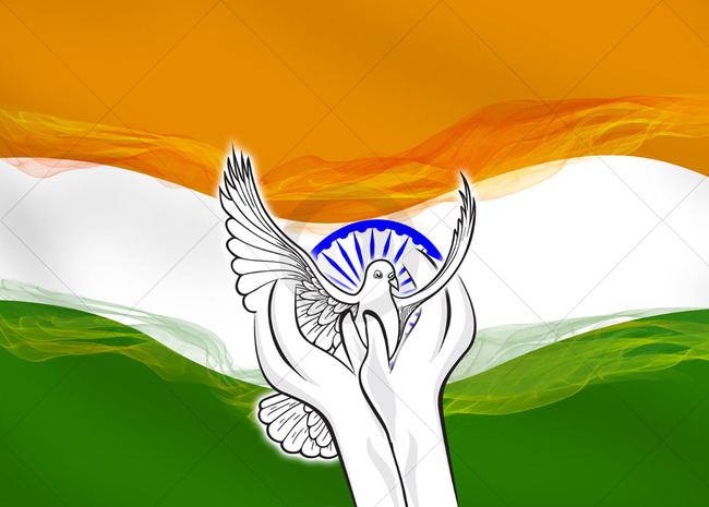 Indian Flag Gallery