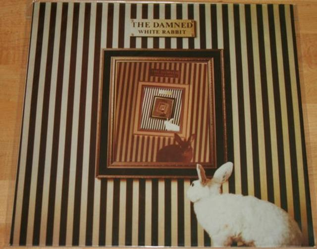 <i>White Rabbit</i> — The Damned