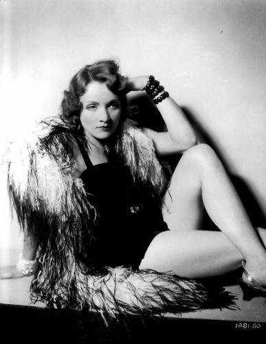 Feathery Marlene Dietrich Photo