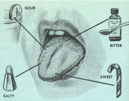 these growths may be on your tongue