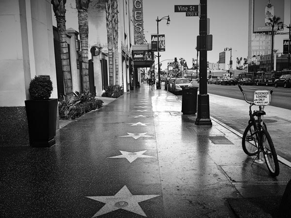 Planning a Tour of Hollywood with a Private Bus Rental