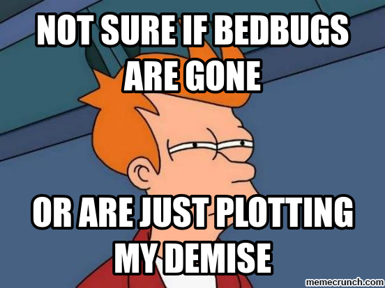OdNb8oNFYeSF4guuQ_MYnw the many horrifying stages of bedbug grief (and how to get through