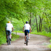 Two cyclists ride along a forest road