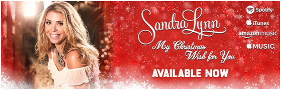 My Christmas Wish for You - Available Now