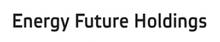 Energy Future Holdings Corporation