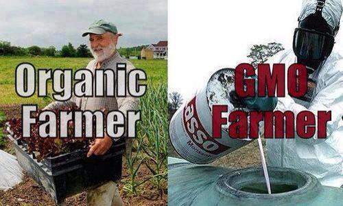"BUY GOOD FOOD & AVOID BAD FOOD ""GMO & Monsanto"" Update Aug14"