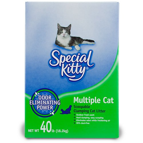 Special Kitty  Lb Clumping Cat Litter