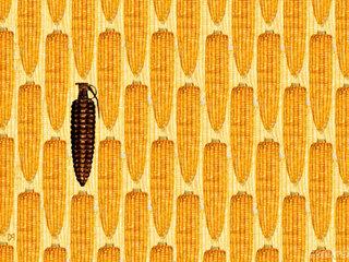 Say No to Monsanto