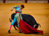 Boycott companies that support bullfighting