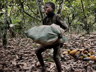 Boycott chocolate produced by child slaves