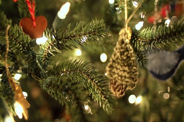 Oceanport Tree Lighting Set For This Weekend