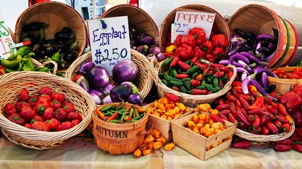 Farmer's Market Coming To Oceanport This Summer