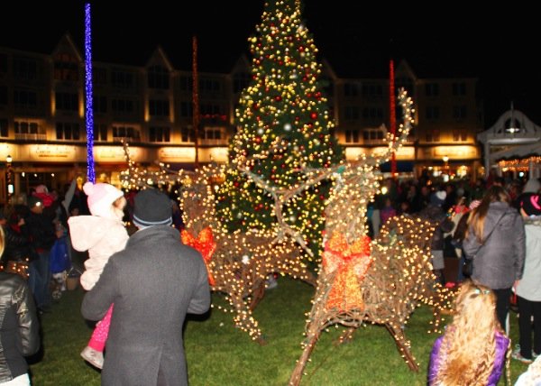 Hundreds Enjoy Long Branch Tree Lighting