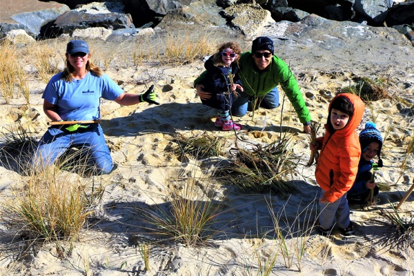 Long Branch Volunteers Plant Dune Grass