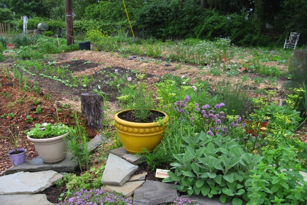 Long Branch Community Garden Season Begins April 22