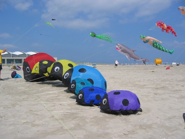 Inaugural Long Branch Kite Festival Set For April 10