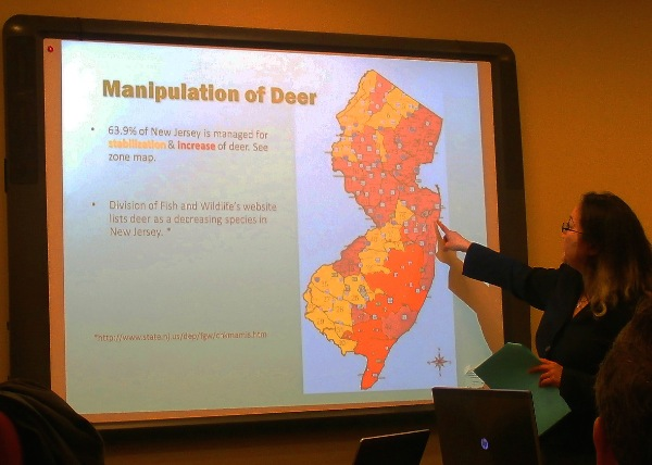 Council Addresses Deer Dilemma in Ocean Township