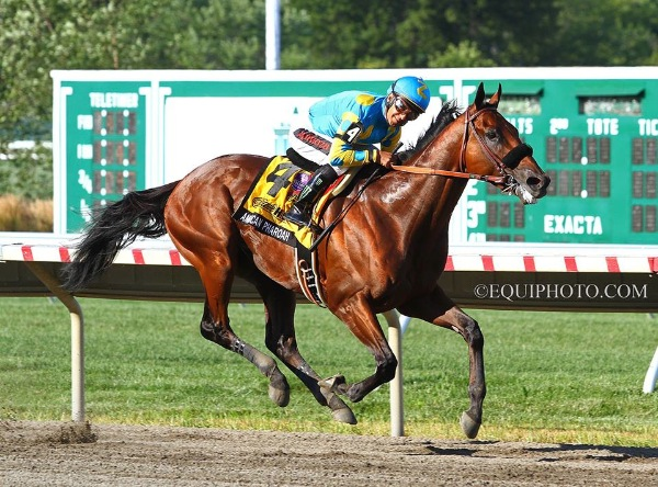 Record Crowd At Monmouth Park As American Pharoah Continues Winning Ways