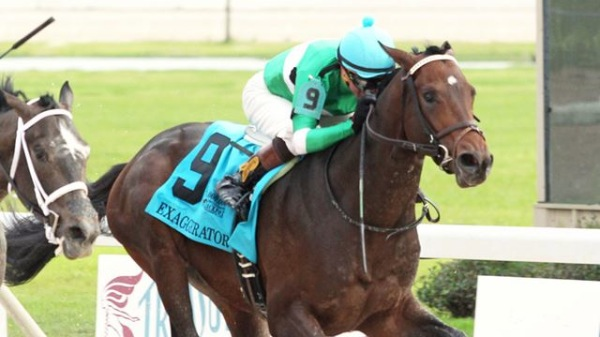 Late Invite Exaggerator Triumphant In Haskell