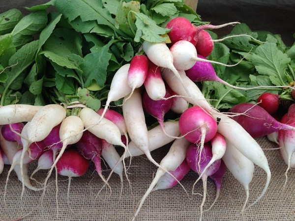 Long Branch Farmers' Market Coming June 25