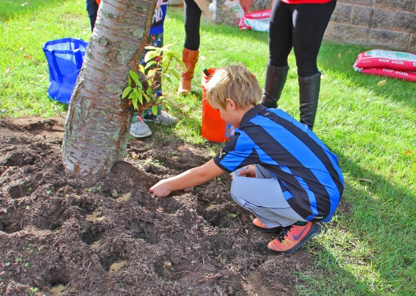 Planting the Promise of Healthy Choices at BME School