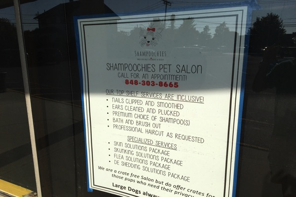 West Long Branch Dog Groomer Moving To New Location