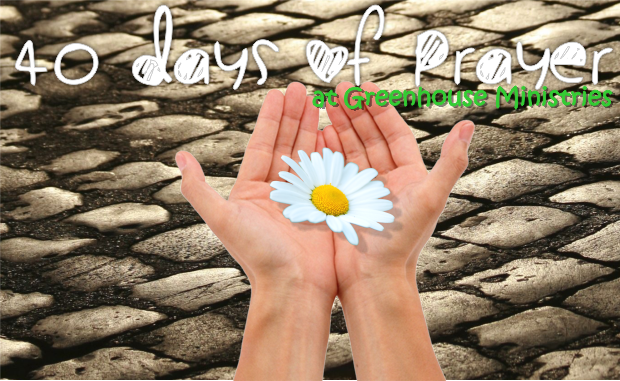 Greenhouse Ministries Hosts 40 Days of Prayer