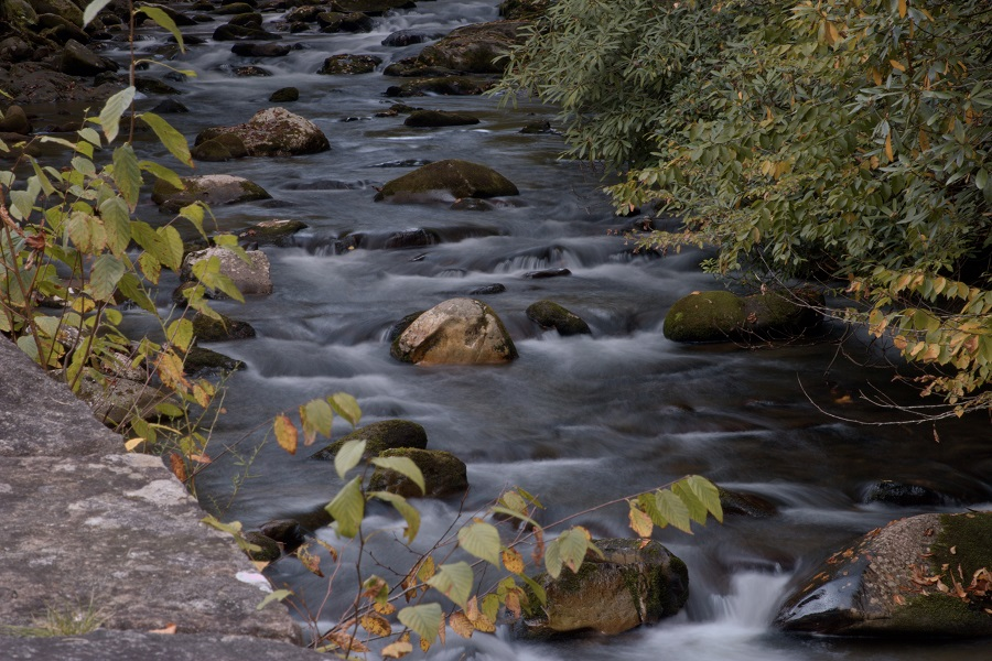Tennessee State Parks is set to build on its record-setting numbers of participants in its Signature Hike Series this year with free After Thanksgiving Hikes at all state parks on Nov. 29.