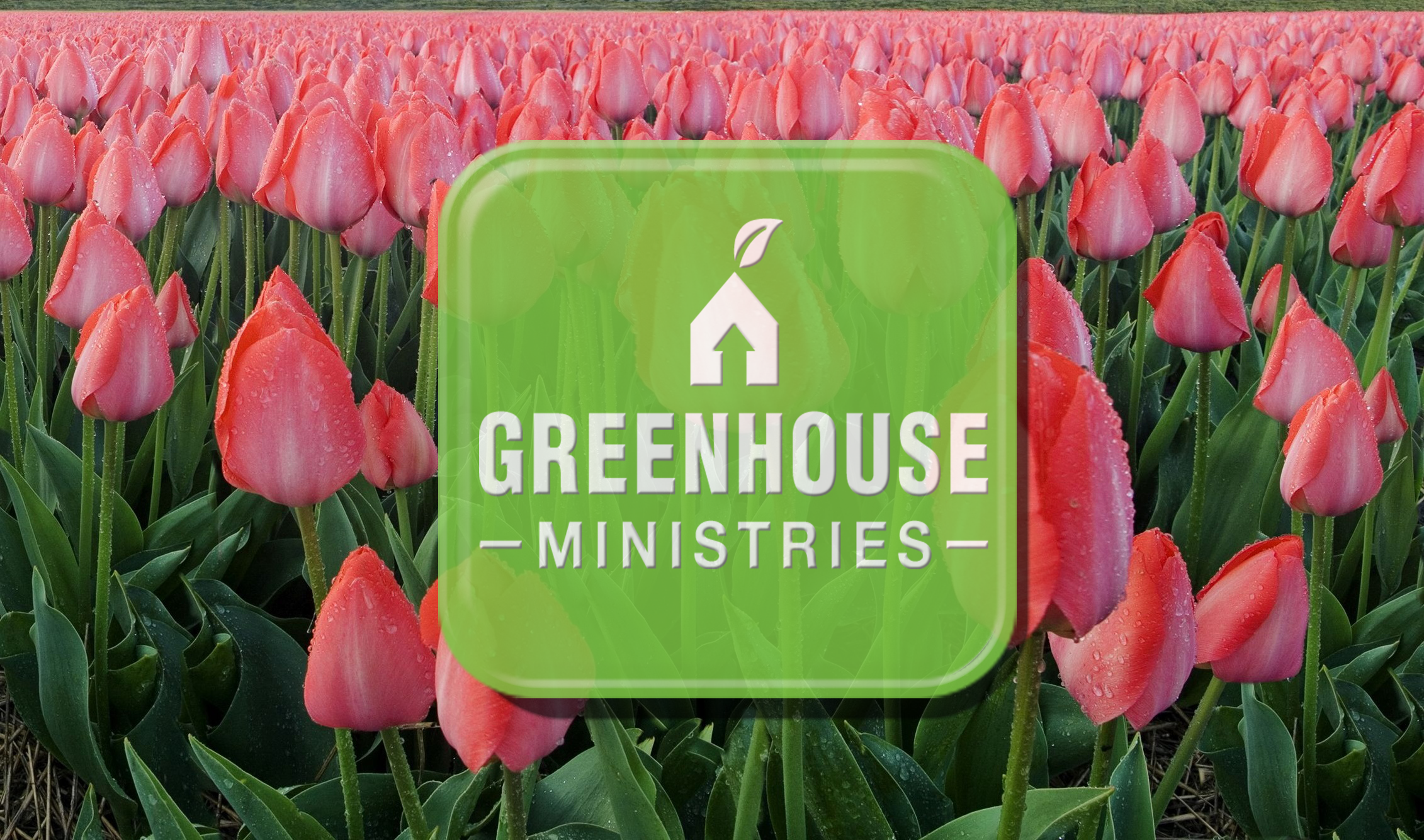 20th Anniversary for Greenhouse Ministries