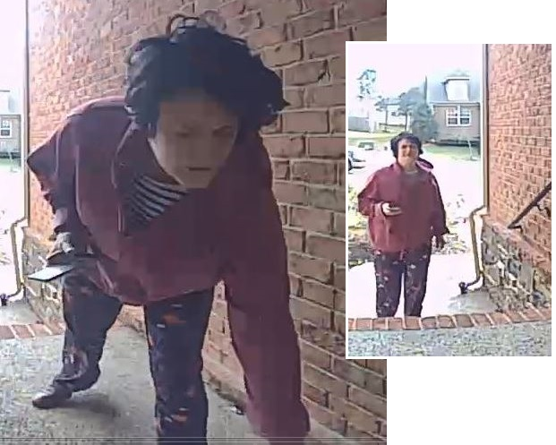 Smyrna Police Ask If You Recognize This Woman