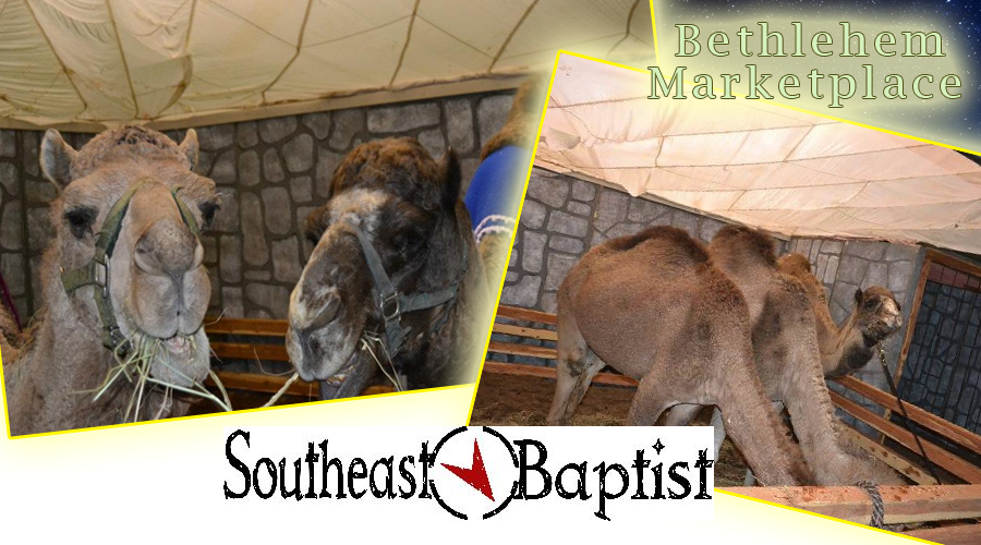 This coming Saturday and Sunday residents have the opportunity to stroll through a re-enactment of the Bethlehem Marketplace. The free event with live animals and more will take place this weekend from noon to 5 in the evening.